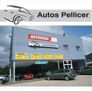 ORIGINAL autos pellicer_img